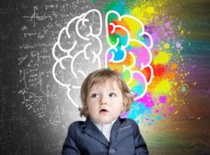 razvitie mozga 300x222 - Развитие полушарий у ребенка